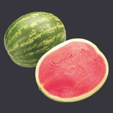 HYBRID WATERMELON, RED AMBER