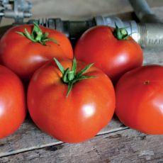 HYBRID TOMATO, RED BOUNTY